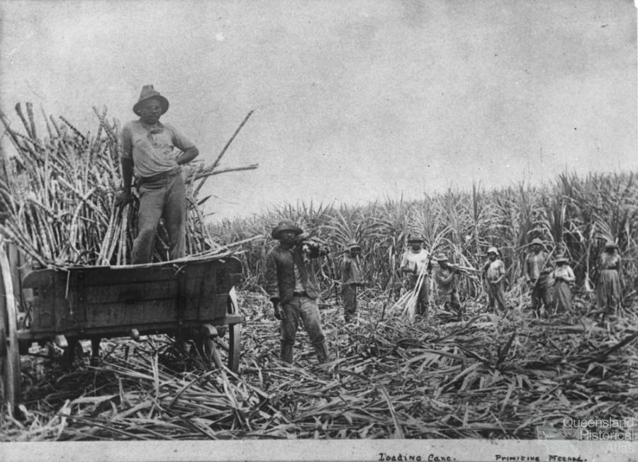 a history of the sugar trade and its effects on slavery Political and economic history of haiti haiti haiti is a country with a number of notable attributes, some good and some bad it is the first republic of people of.