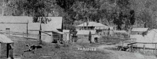 Allen Street, Paradise, 1891