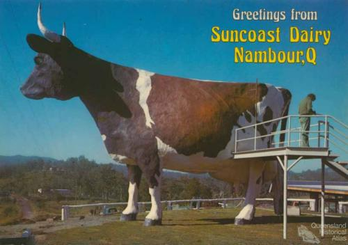 The Big Ayrshire Cow, Nambour