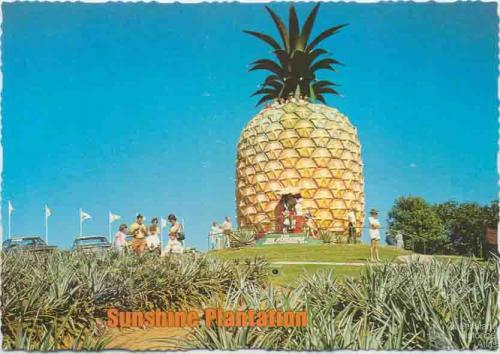 The Big Pineapple, Woombye