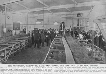 AML&F ram sale at Bulimba, 1925