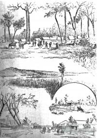 Sketches of Wolfgang Strike camp, shearers on strike, 1891