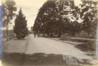 Women cycling through the Botanic Gardens, Brisbane, 1896