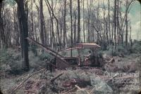 Land clearing, Kingaroy Shire, 1955