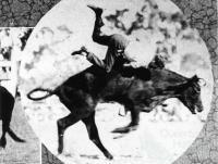 Bull riding at the Mount St John rodeo, 1933