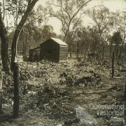 Prickly pear treatment, Chinchilla, 1928-29