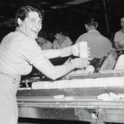 Mrs E Buikstra checks slices of pineapple for faults, Northgate cannery, 1959