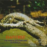 Crocodile sunbaking on the Daintree River