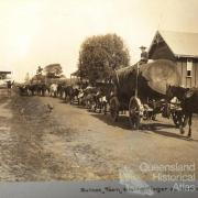 Bullock team hauling timber at Lowood, c1890s