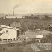 Marian Sugar Mill, Mackay District, c1910