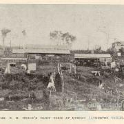 Mr Heale's dairy farm at Kureen (Atherton Tablelands), 1918