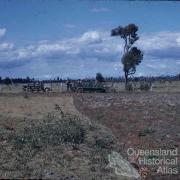Land clearing, Kingaroy Shire, 1955