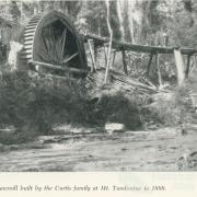 An old water powered sawmill at Mount Tamborine, 1958