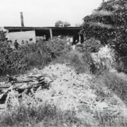 Holidaymakers at the abandoned turtle cannery on Nor'West Island, c1910