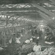 Tinnenburra Woolshed, 1918