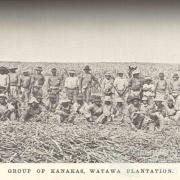 Group of South Sea Islanders, Watawa Plantation, Bingera, 1897