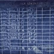 The data board, Tangalooma whaling station, 1960
