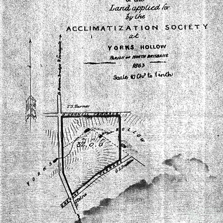Plan of the land applied for by the Acclimatization Society at Yorks Hollow 1863